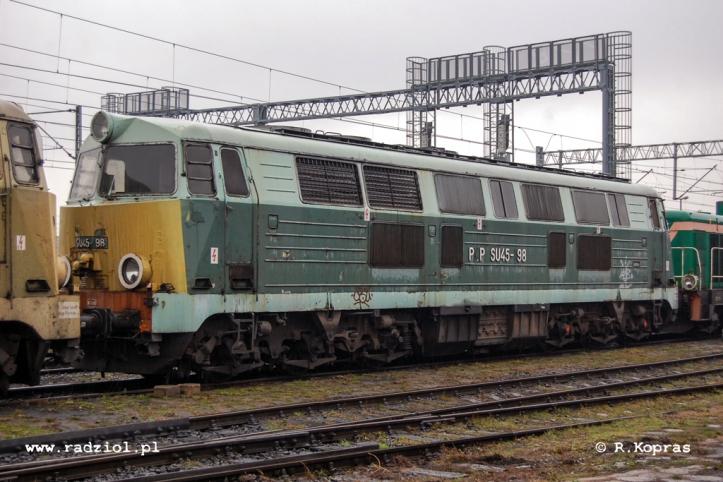 101208_SU45-198_Poa_radziolpl